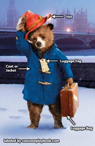 costume Paddington Bear - outfit