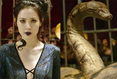 Nagini - Crimes of Grindenwald